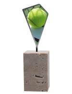 Trofeo padel-tenis T50001557